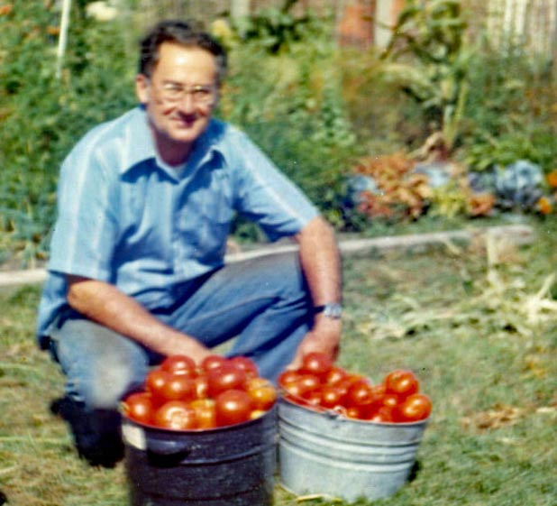 My dad's daily summertime haul from our backyard Photo credit: Holter Family Collection
