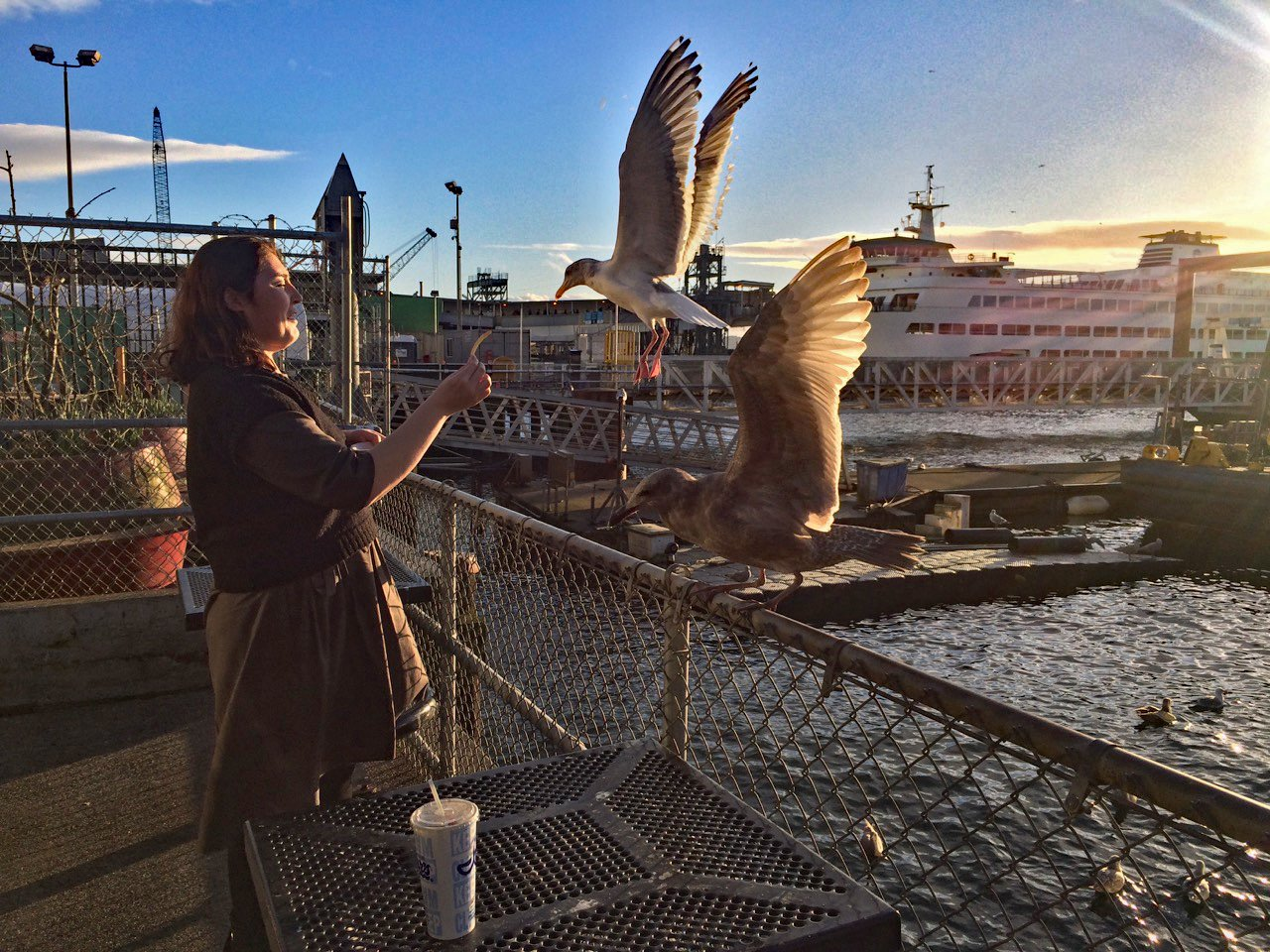 Nigora Umarova feeds the birds – usually forbidden on Seattle's waterfront, but this place is the exceptionSeattle, February 17, 2018