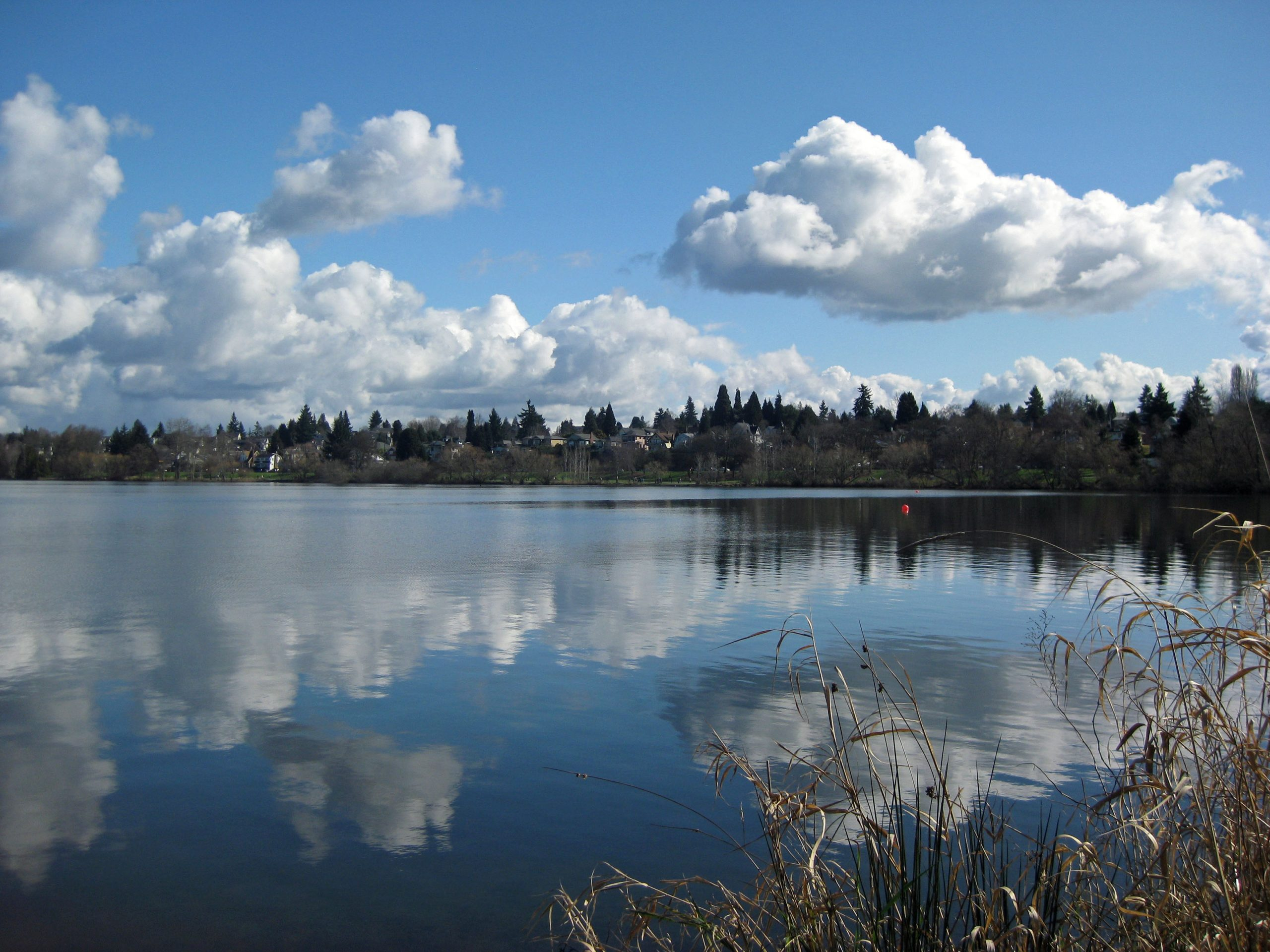 Green Lake, a.k.a. Reflection Lake today. (March 3, 2013)