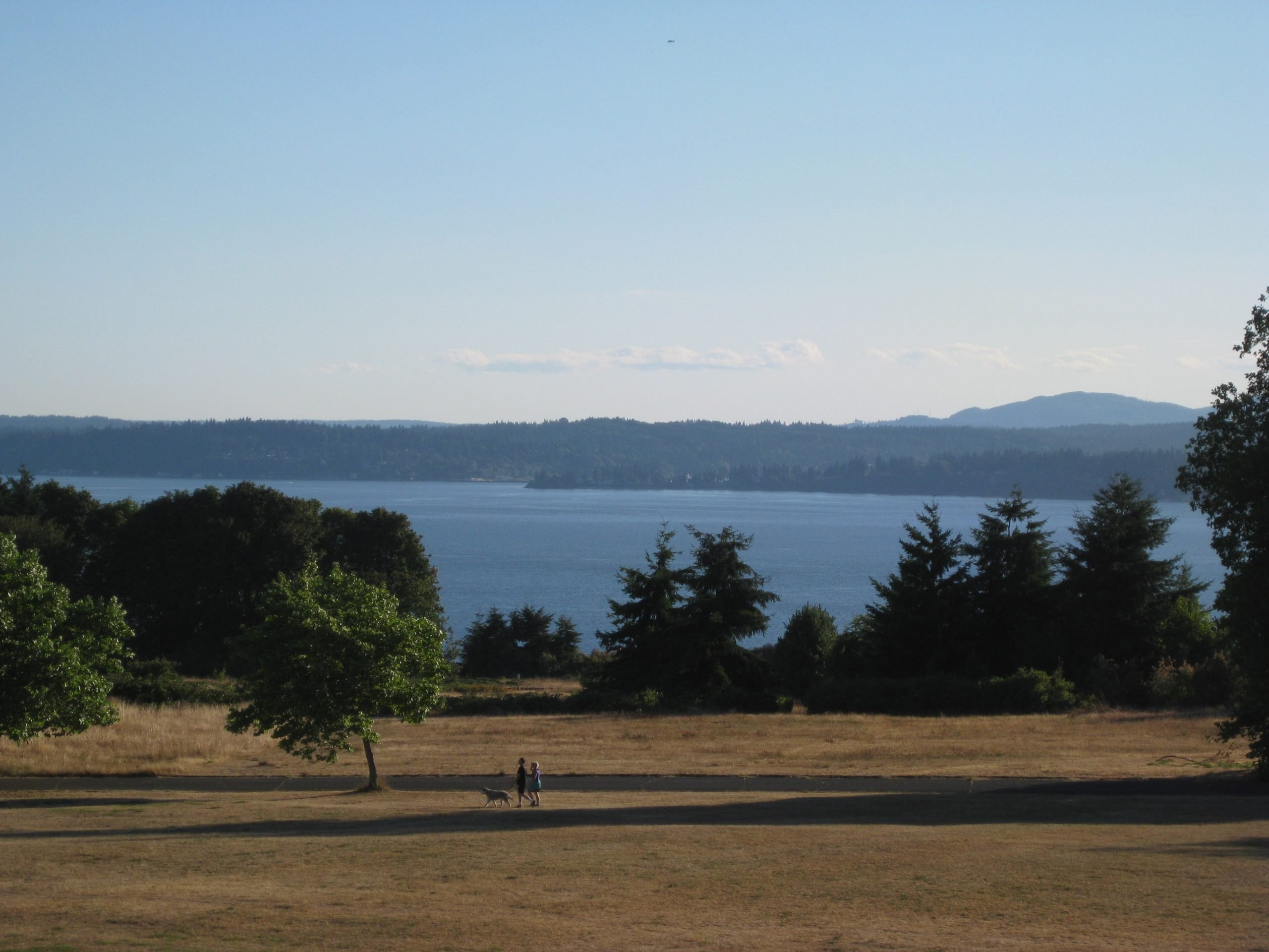 """Seattle is the """"Emerald City,"""" but its grass in this record summer heat? Brown, as we sweat it out in Seattle. (July 30, 2015)"""