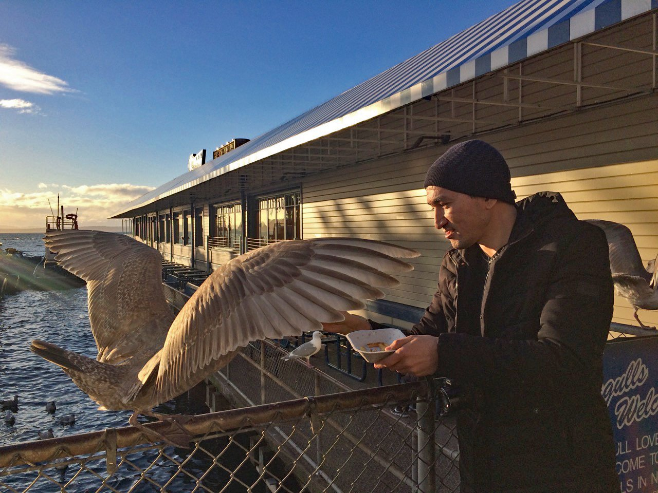 At Ivar's Fish Bar, you ARE allowed to feed the bird, so Sanjar Said does! Seattle, February 17, 2018